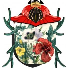 MIHO scarabeo grande